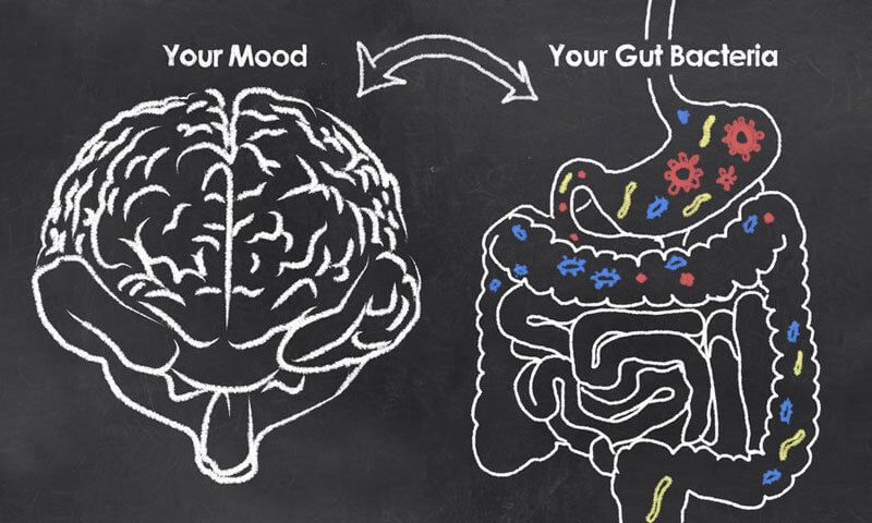 Image result for grain brain depression